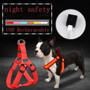 Λουρί LED USB για Σκύλους για να μην χάνονται