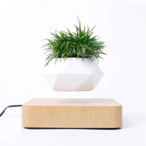 Μαγνητική γλάστρα για φυτό μπονσάι με αιώρηση